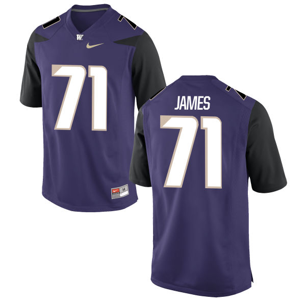 Men's Nike Matt James Washington Huskies Authentic Purple Football Jersey